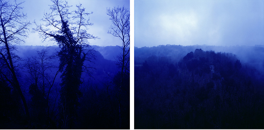 Blue Forest #3,#4