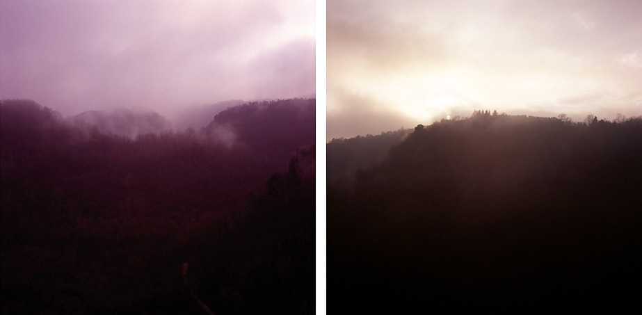 Red Forest, #3, #4